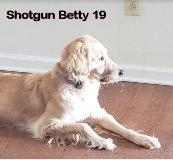 Shotgun Betty 19