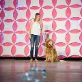 Fido Fashion Show